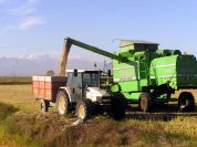 Threshing - Agriturismo Greppi