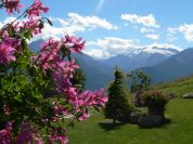 Natura - Bed & Breakfast Petit Coin de Paradis