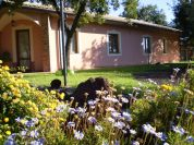 Il b&b eil giardino - B&B Poggiofelice