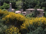 Village of San Pietro Acquaeortus - Municipality of Allerona