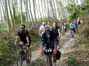 By bike in Ritano Nature Reserve, Torrazza Piemonte