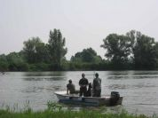 Wels catfish: the Park asks fishers not to release captured fish in the river