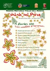 2010: Sustainable Christmas with RomaNatura