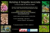 workshop di fotografia ravvicinata