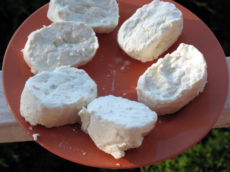 aree protette del po torinese cheese fresh tomino canavesano pat