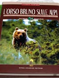 L&#39;orso bruno sulle Alpi