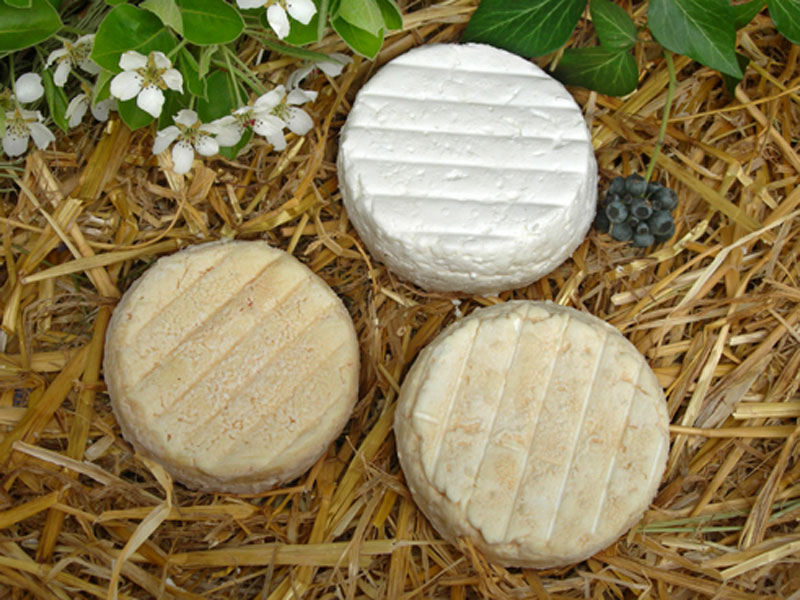 Local goat's milk cheese