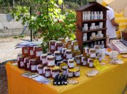 Honey of Liguria