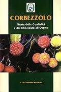 Corbezzolo
