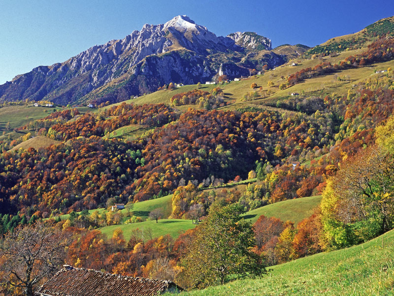http://www.parks.it/parco.grigna.settentrionale/foto/Autunno-800.jpg