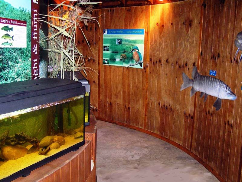 Aquatic Ecosystem Interpretation Center, interior