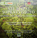 Nel Bosco sopravvissuto