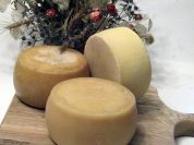 Amatrice Pecorino Cheese