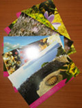 Set of 10 Postcards dedicated to the Landscapes of Porto Conte Park