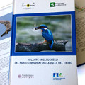 Atlas of the Birds of Parco Lombardo della Valle del Ticino