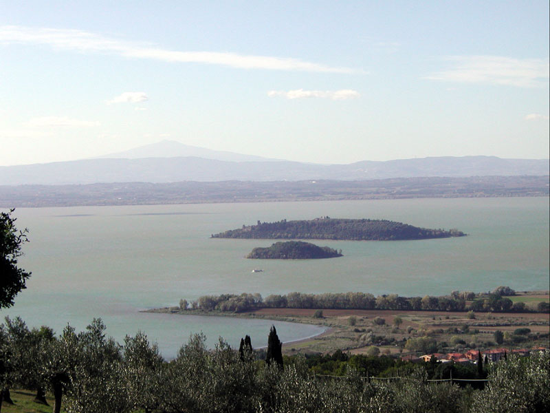 Panorama of the lake