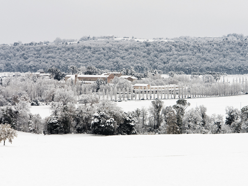 Winter panorama of the Abbey