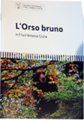 L&#39;orso bruno in Friuli Venezia Giulia