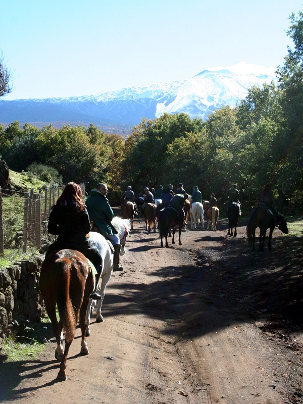 Horse riding trails in Etna Park