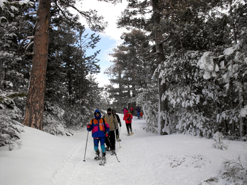 Parco d'inverno - trekking with snowshoes