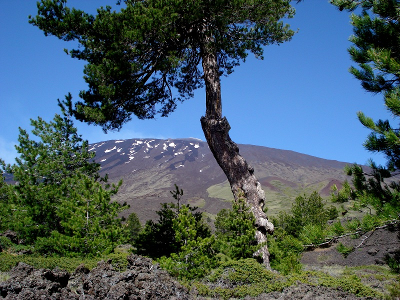 Parco Etna, panorama Galvarina