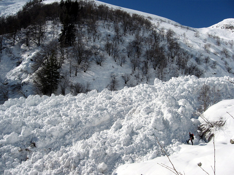 Sellery avalanche