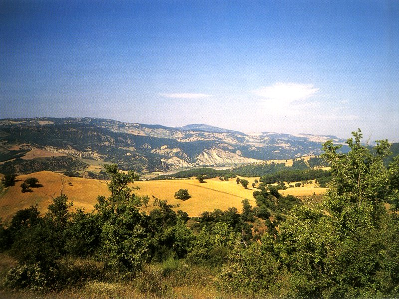 Sauro valley seen from the Sanctuary of Serra Lustrante
