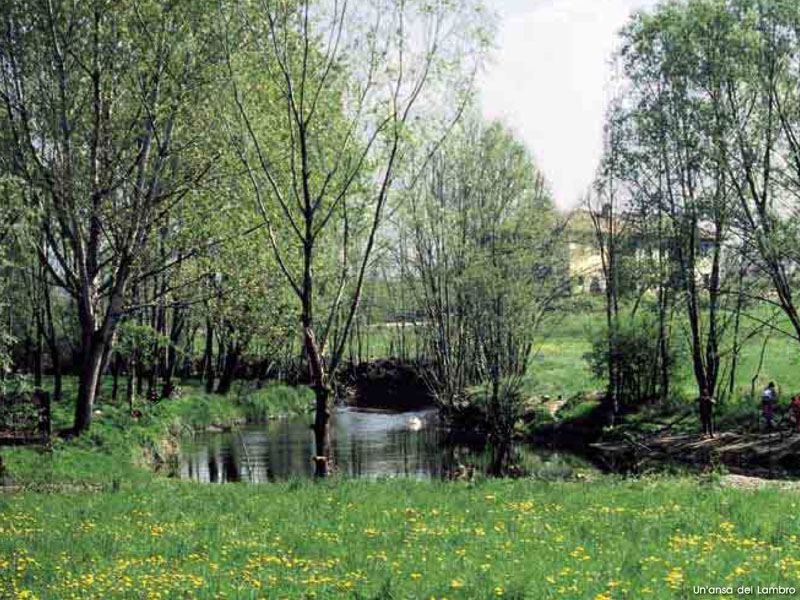Bends of river Lambro