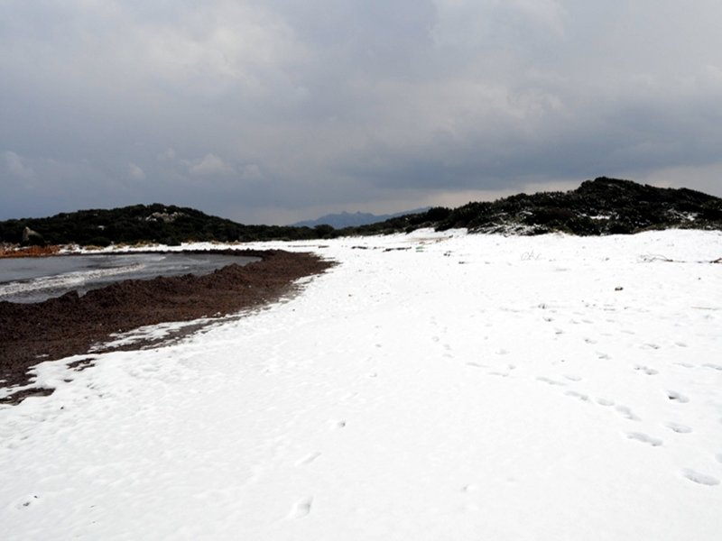 Snow at La Maddalena