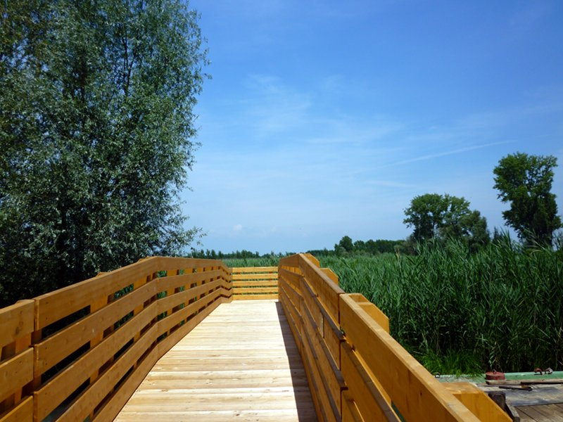 Rivalta sul Mincio, pedestrian bridge from the river to the cane thicket near the Park Center