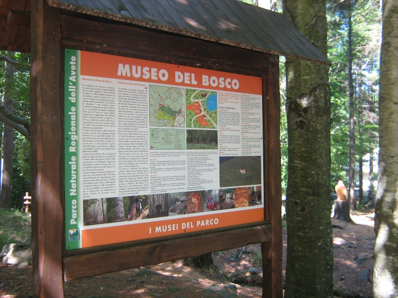 Museo del Bosco