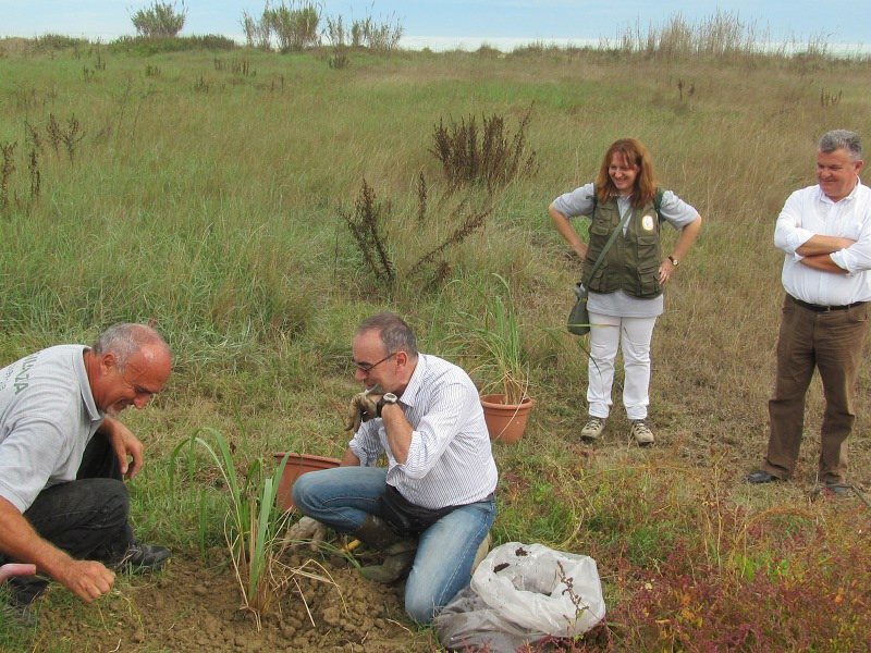 Reintroduction of animal species in the Sentina Nature Reserve