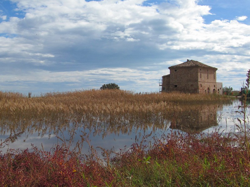 The wetland and the historic building