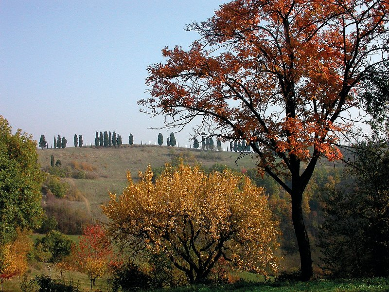 Autunno in Spipola