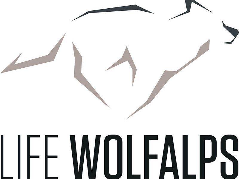Logo lifewolfalps