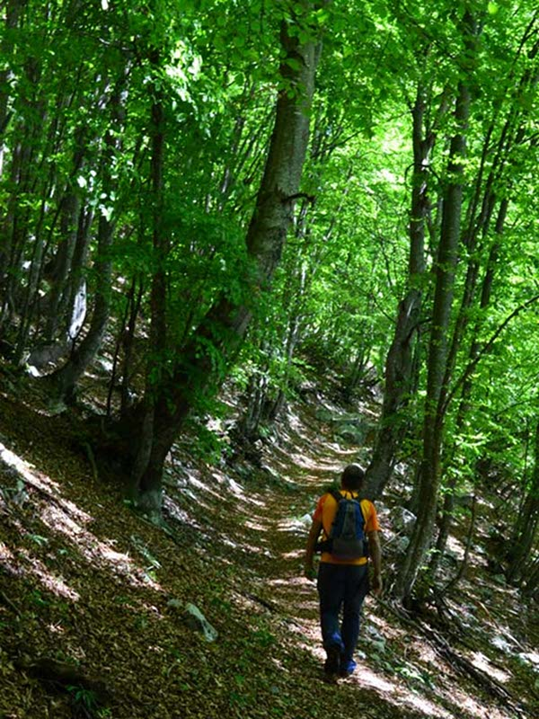 CAI Path No. 805, Val Canzoi, Finestra