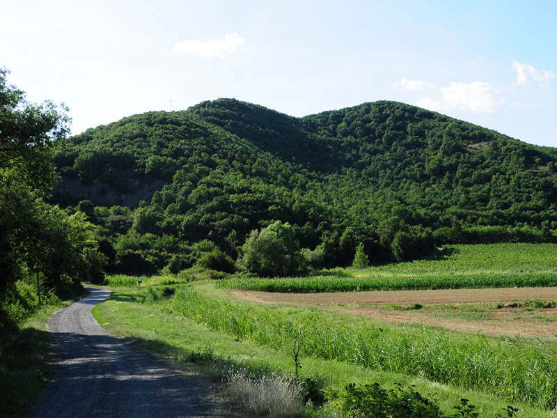 View of Monte Croce