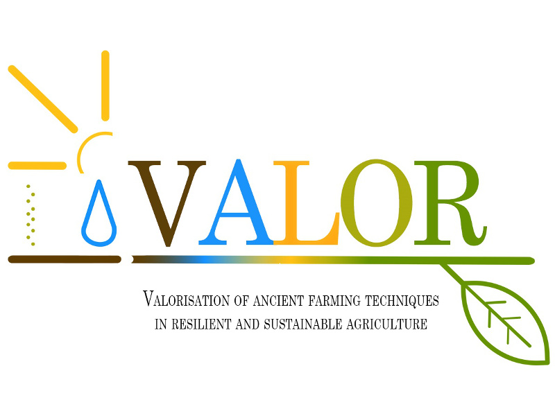 Project VALOR