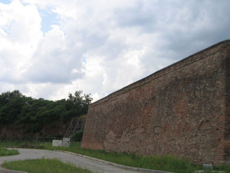 The walls of Bozzolo