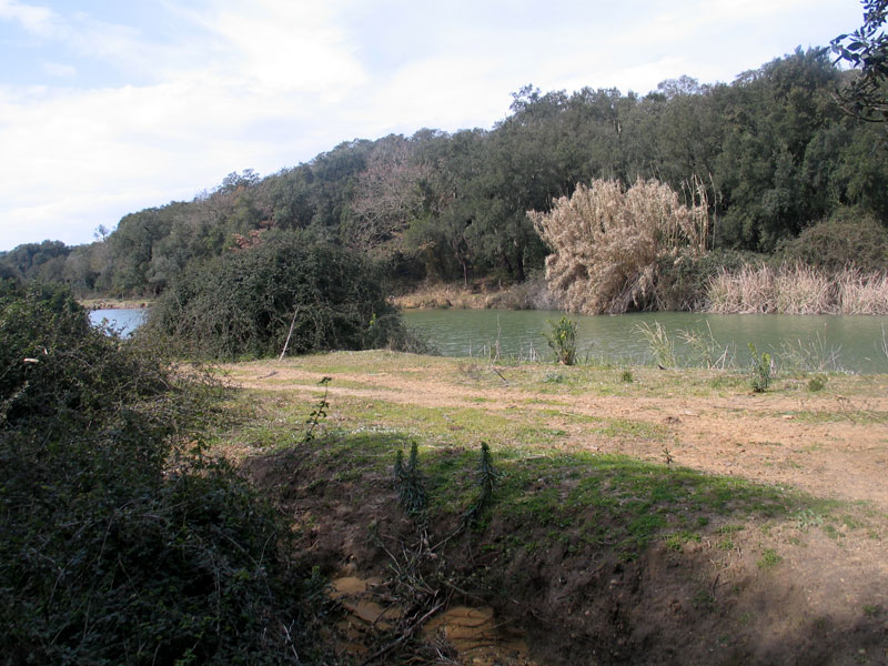 Ogliasto small lake