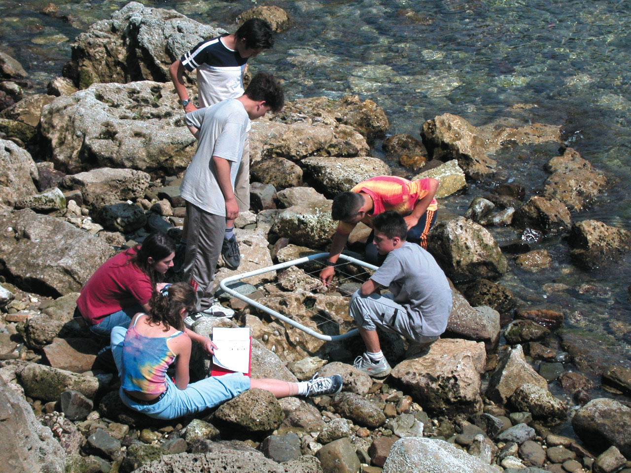 Discovering the tidal area