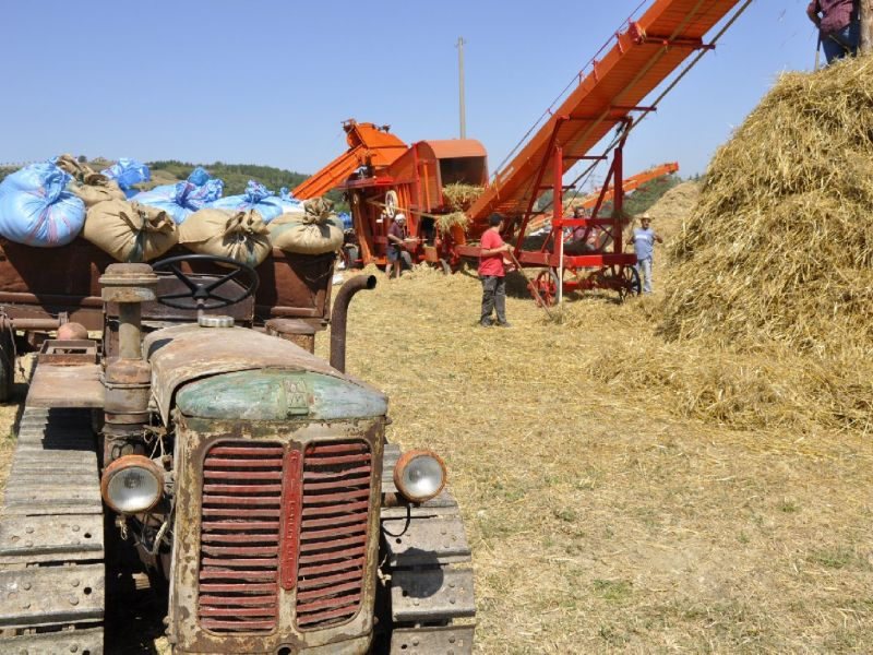 Ancient threshing time